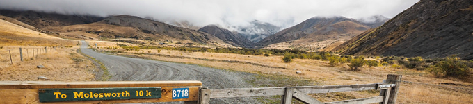 Think Piece 28 – Biological Corridors Throughout New Zealand now published